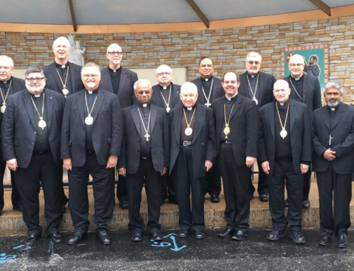 Eastern Catholic Bishops Associates meeting in St. Louis, MO